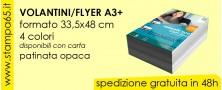 Volantini  Flyer A3 + 33,5 x 48 cm